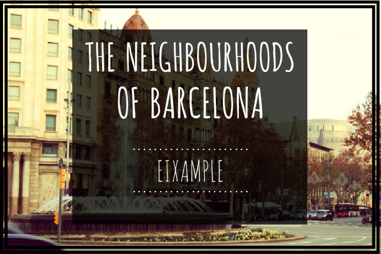 EIXAMPLE COVER