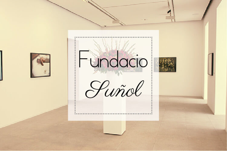 FUNDACIO SUÑOL COVER