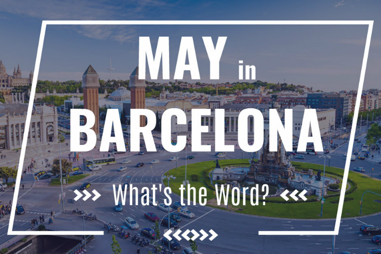 MAY in BARCELONA COVER
