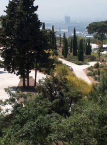 freemuseums botanico