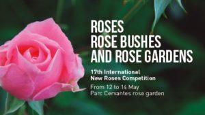 roses17-528x297-eng